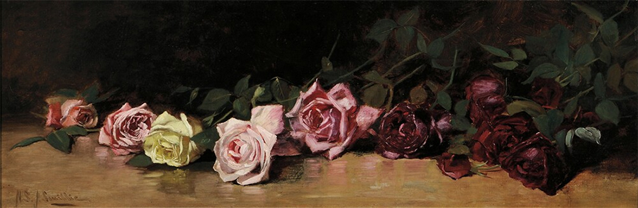 Helen Sheldon Jacobs Smillie's Roses
